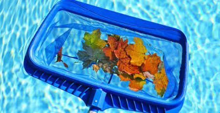Leaf Net for Pool in Fall
