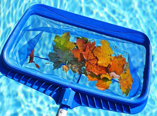 Leaf Net for Pool in Fall
